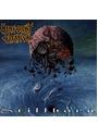 Malevolent Creation - Stillborn