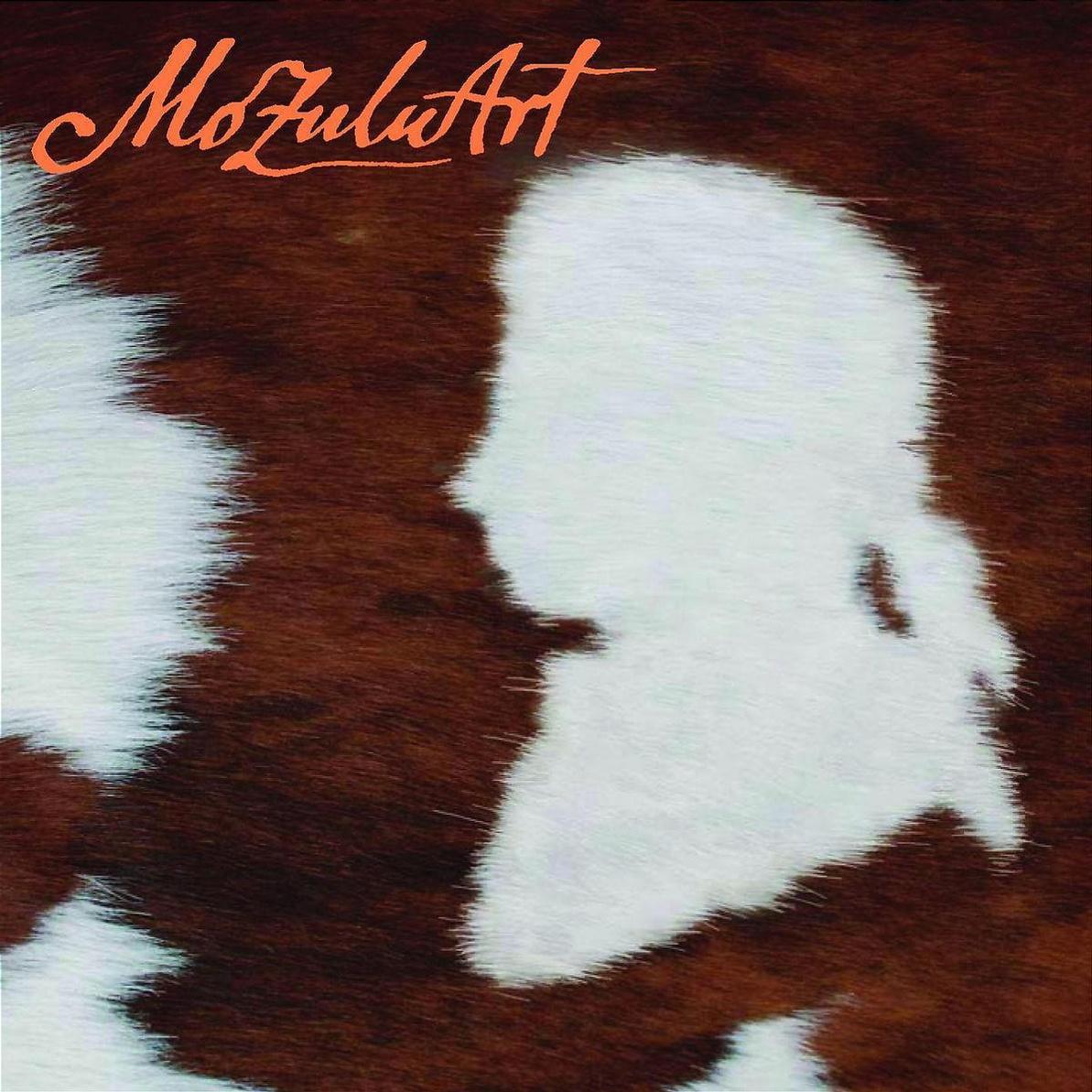 Mozuluart - Zulu Music Meets Mozart