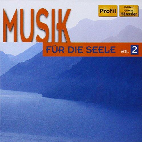 Constantino Tarqui - Musik für die Seele Vol. 2