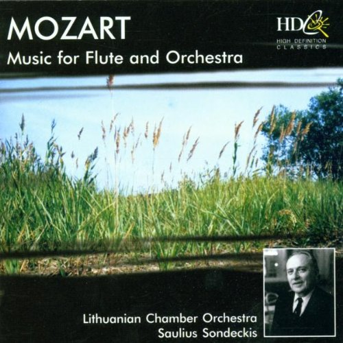 Sonde Lithuanian Chamber Orch. - Musik für Flöt...