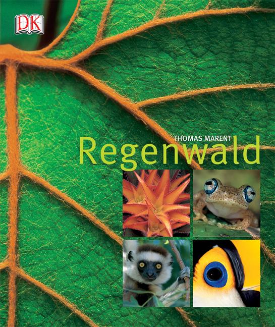 Regenwald - Ben Morgan