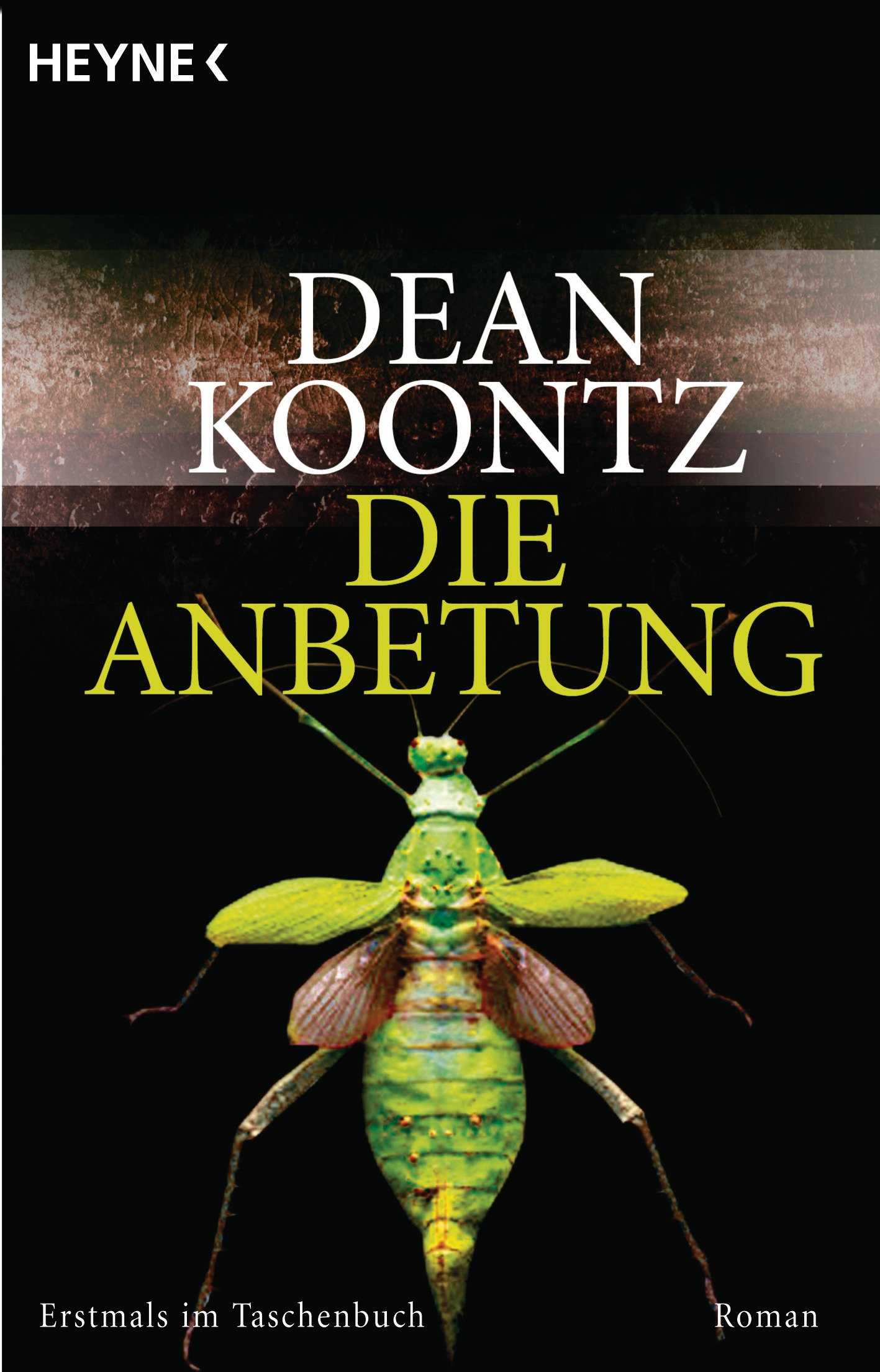 Die Anbetung: Odd Thomas - Band 1 - Dean Koontz [Taschenbuch]