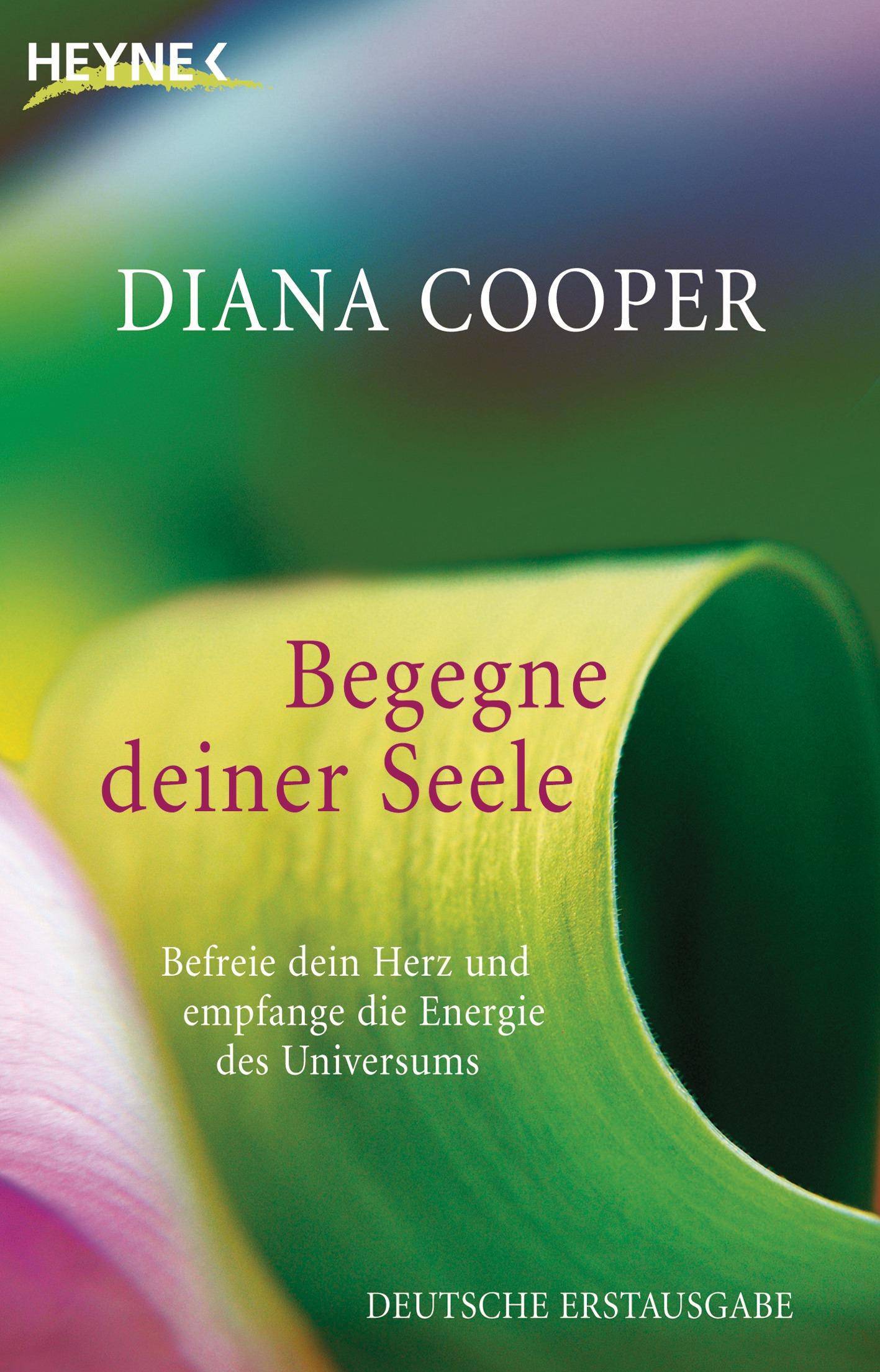 Begegne deiner Seele: Befreie dein Herz und empfange die Energie des Universums - Diana Cooper