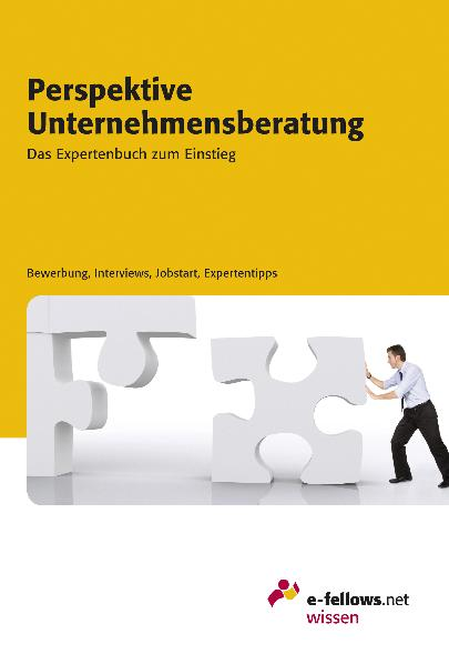 Perspektive Unternehmensberatung 2010: Das Expe...