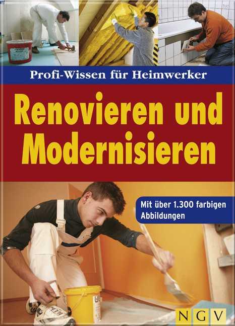 Renovieren und Modernisieren: Profi-Wissen für ...