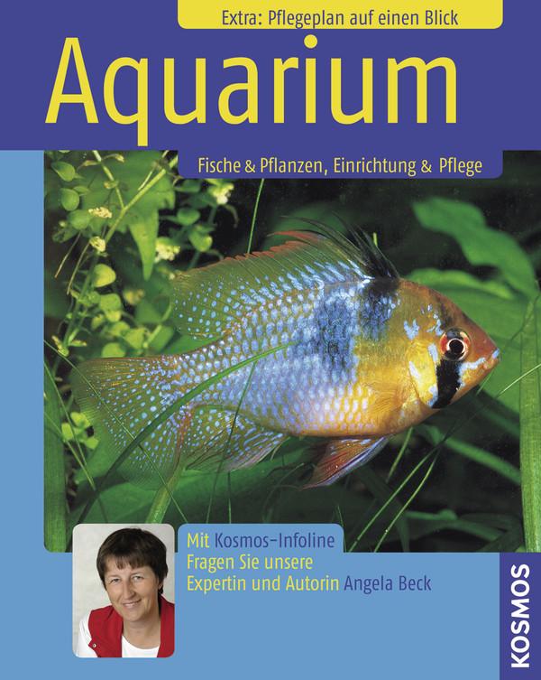 Aquarium: Fische & Pflanzen, Einrichten & Pfleg...