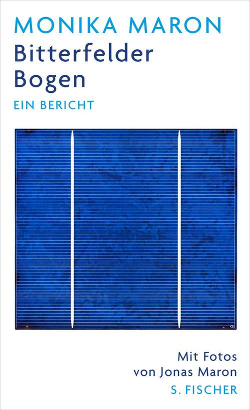 Bitterfelder Bogen. Ein Bericht - Monika Maron