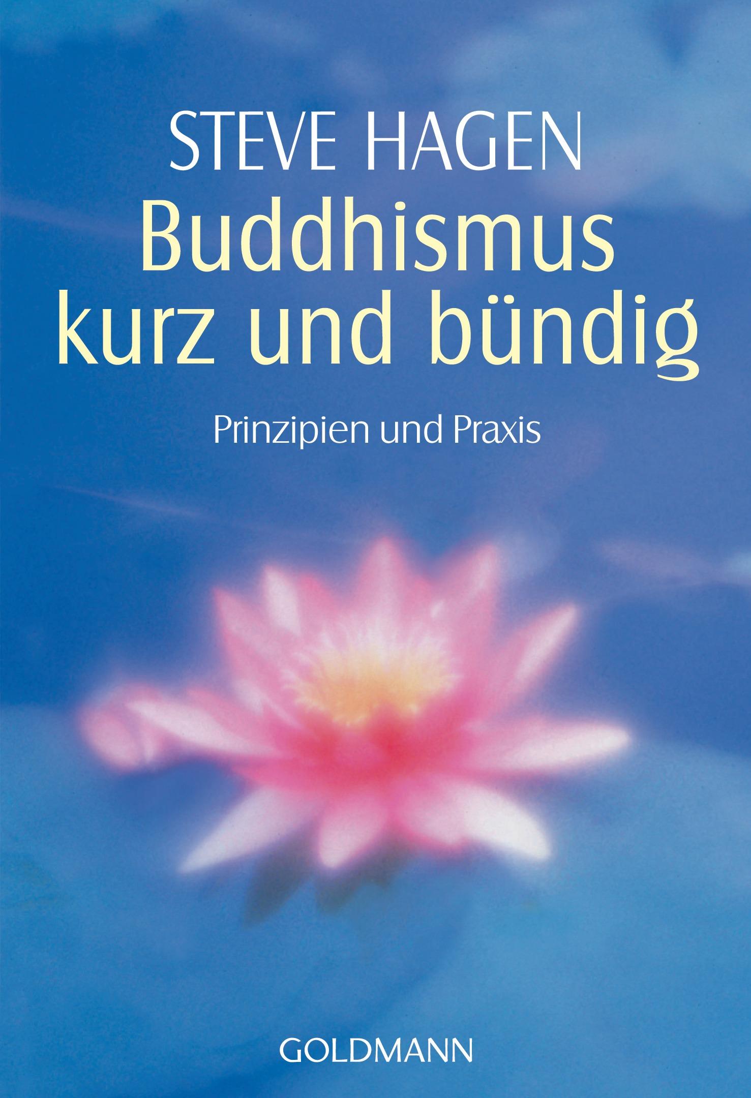 Buddhismus kurz und bündig: Prinzipien und Praxis - Steve Hagen