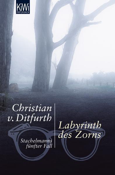 Labyrinth des Zorns: Stachelmanns fünfter Fall - Christian von Ditfurth