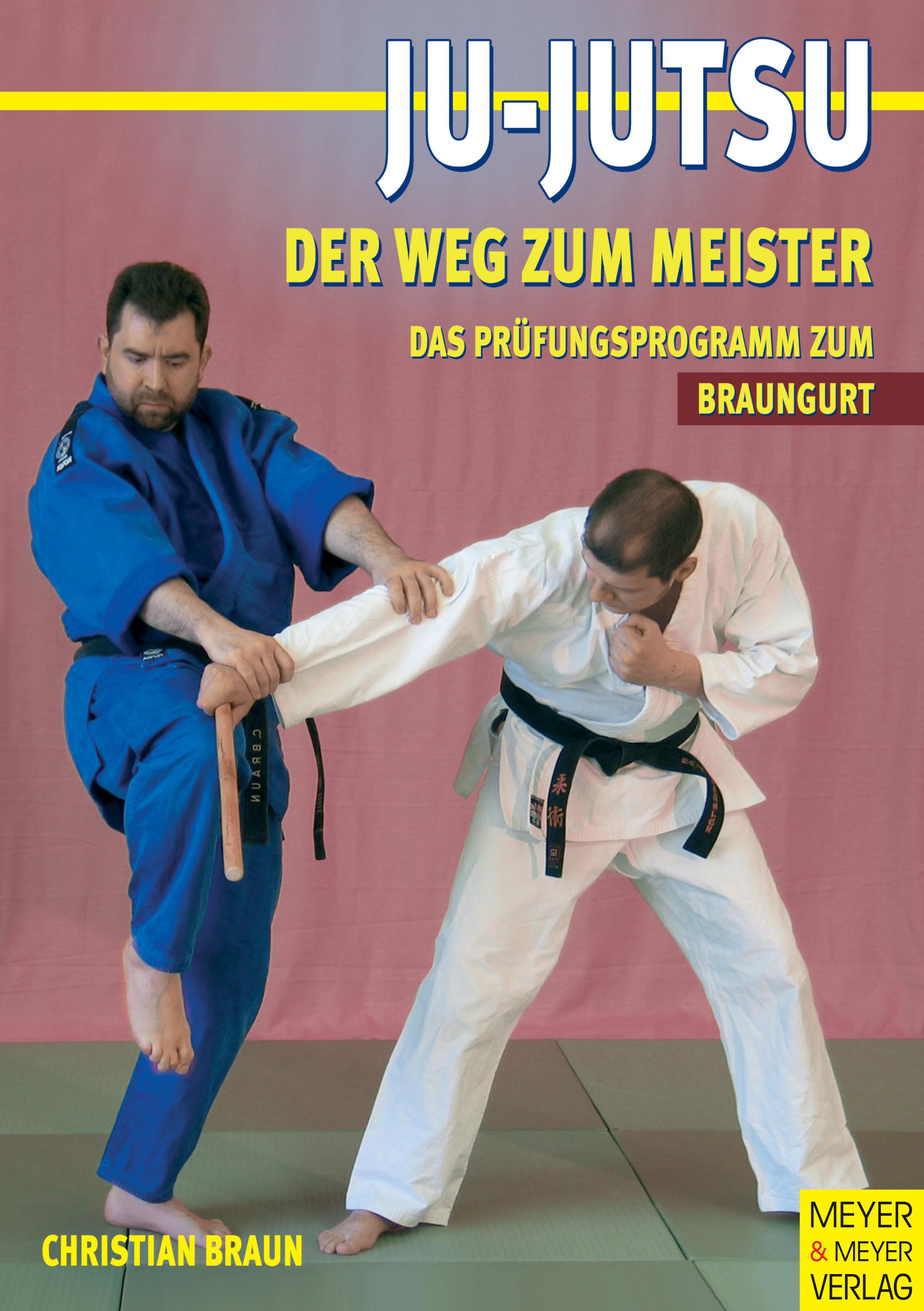 Ju Jutsu. Der Weg zum Meister. Das Prüfungsprog...