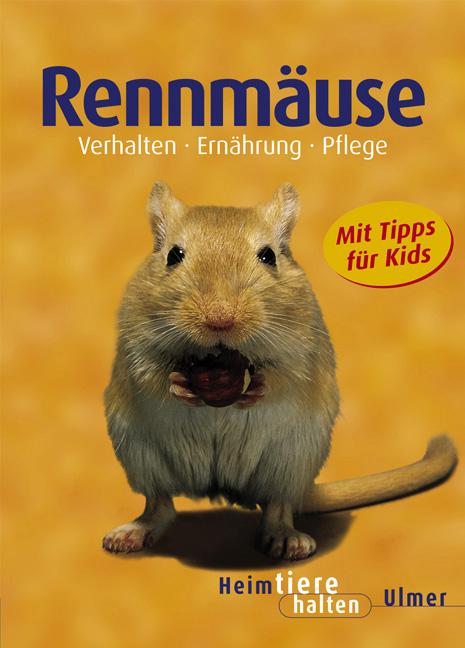 Rennmäuse - Heike Schmidt-Röger