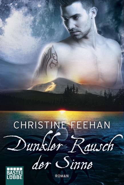 Dunkler Rausch der Sinne - Christine Feehan [Taschenbuch]