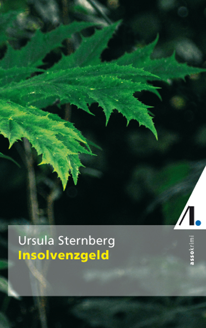 Insolvenzgeld - Ursula Sternberg