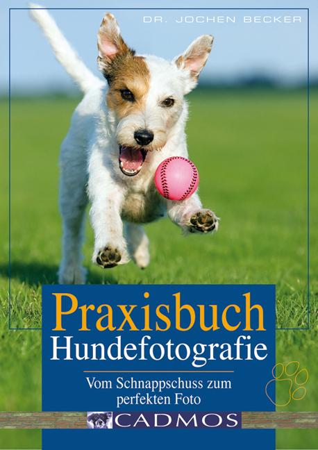 Praxisbuch Hundefotografie: Vom Schnappschuss z...