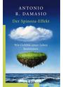 Der Spinoza-Effekt: Wie Gefühle unser Leben bestimmen - Antonio R. Damasio