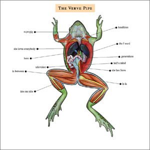 the Verve Pipe - The Verve Pipe