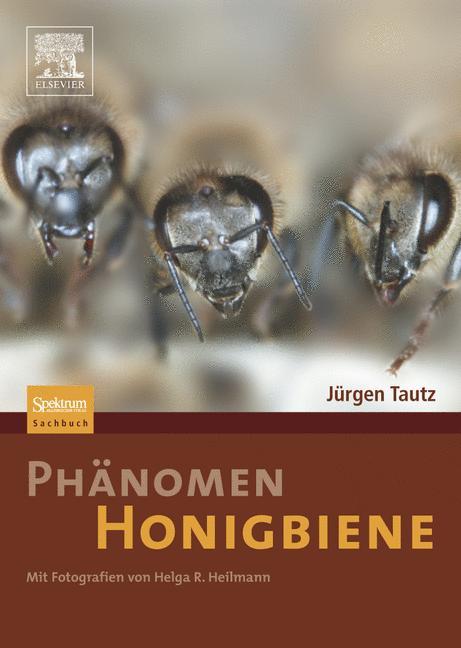 Phänomen Honigbiene - Jürgen Tautz