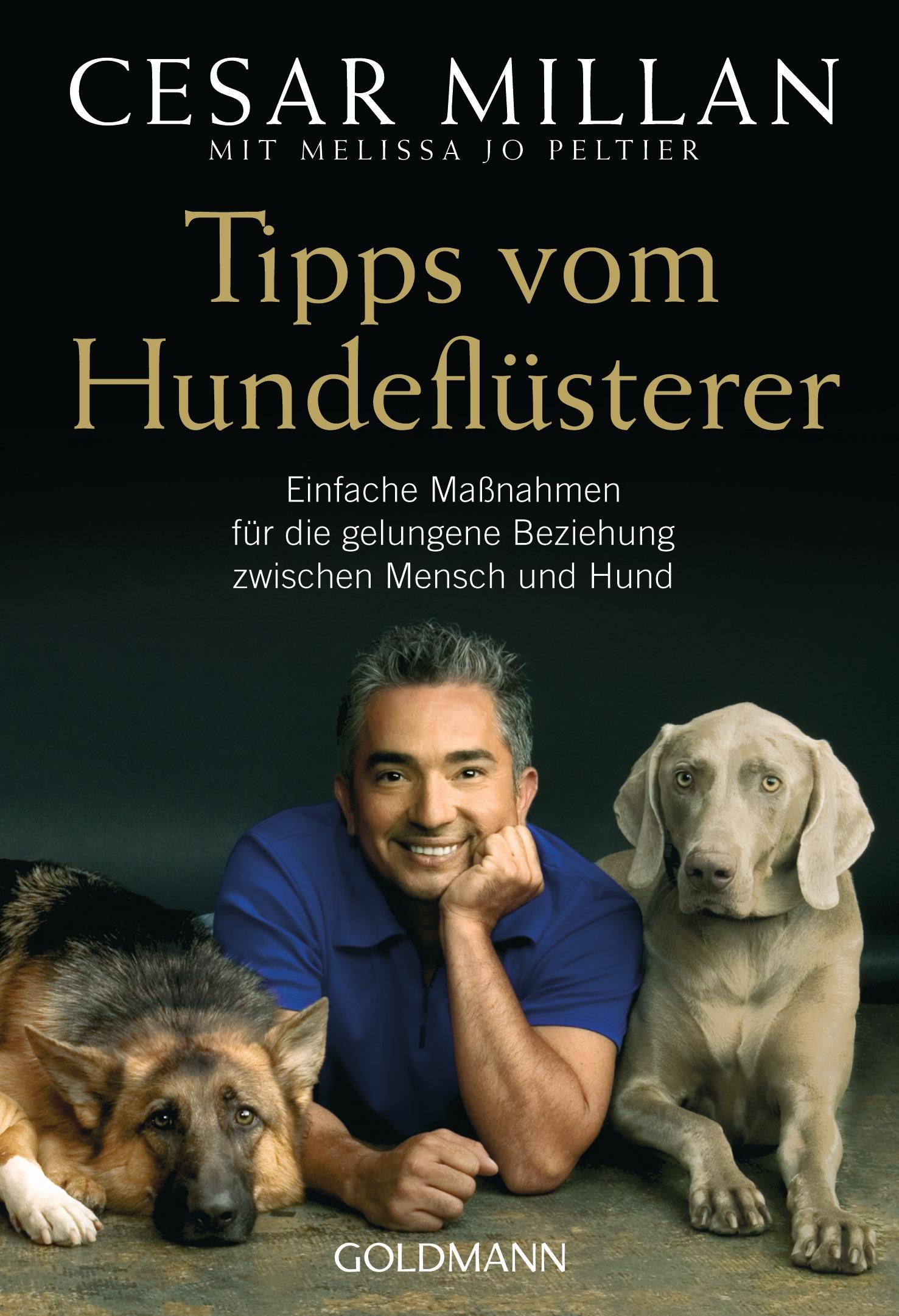 Tipps vom Hundeflüsterer: Einfache Maßnahmen für die gelungene Beziehung zwischen Mensch und Hund - Cesar Millan