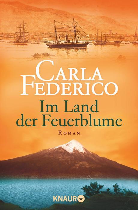 Im Land der Feuerblume - Carla Federico [Taschenbuch]