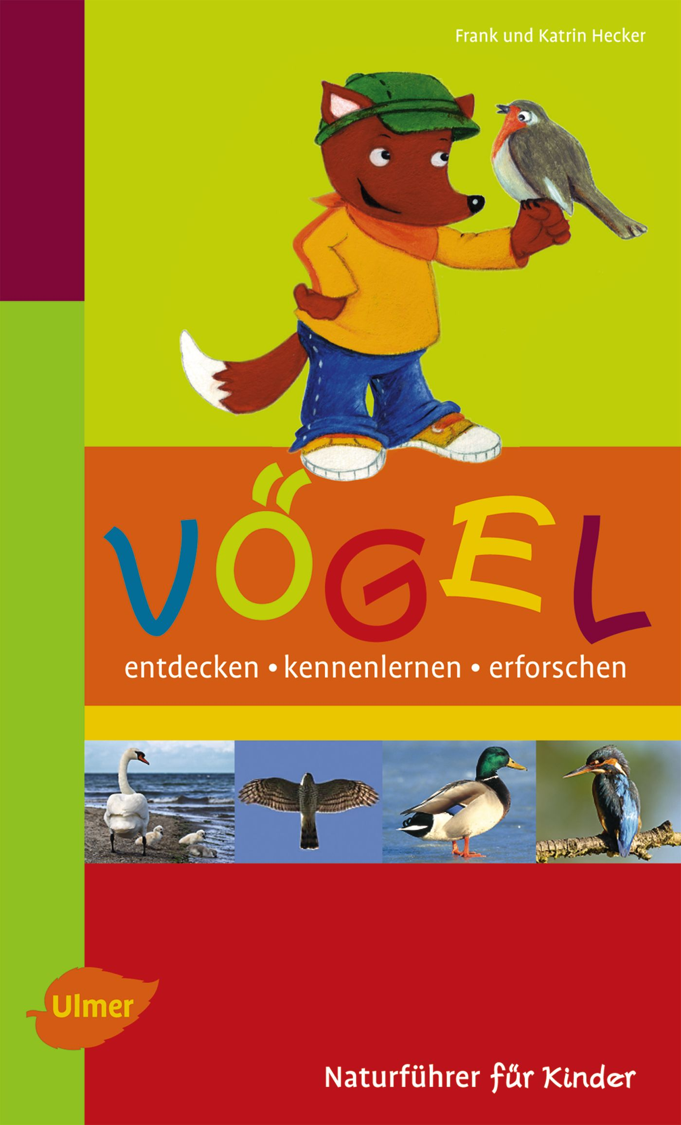 Vögel: Entdecken, kennen lernen, erforschen - F...