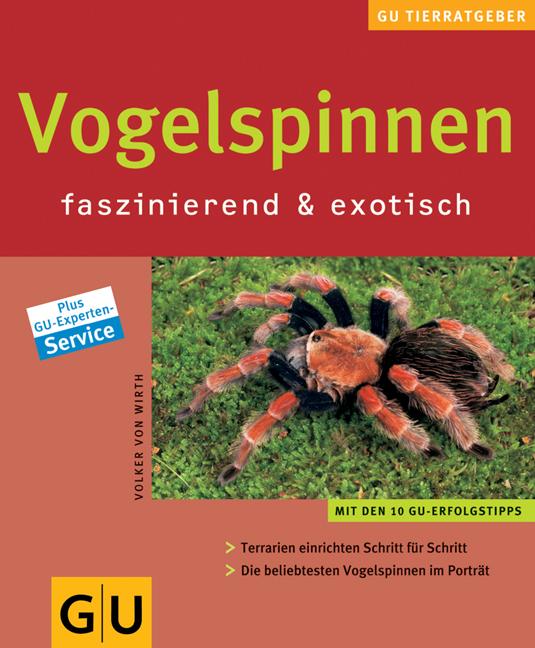 Vogelspinnen faszinierend & exotisch: Terrarien...