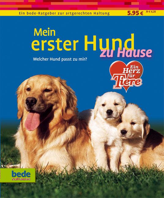 Mein erster Hund zu Hause - Dominik Kieselbach