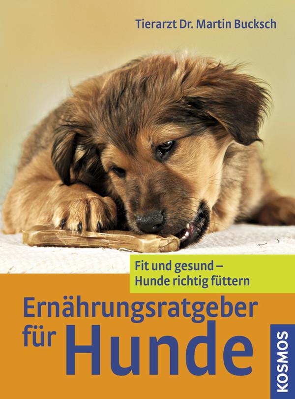 Ernährungsratgeber für Hunde: Fit und gesund - Hunde richtig füttern - Martin Bucksch
