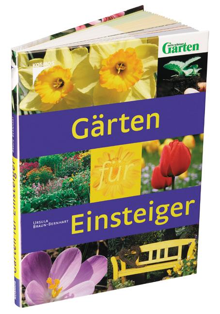 Gärten für Einsteiger - Ursula Braun-Bernhart