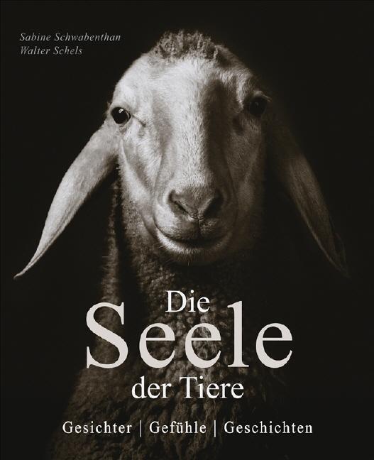 Die Seele der Tiere: Gesichter . Gefühle . Gesc...