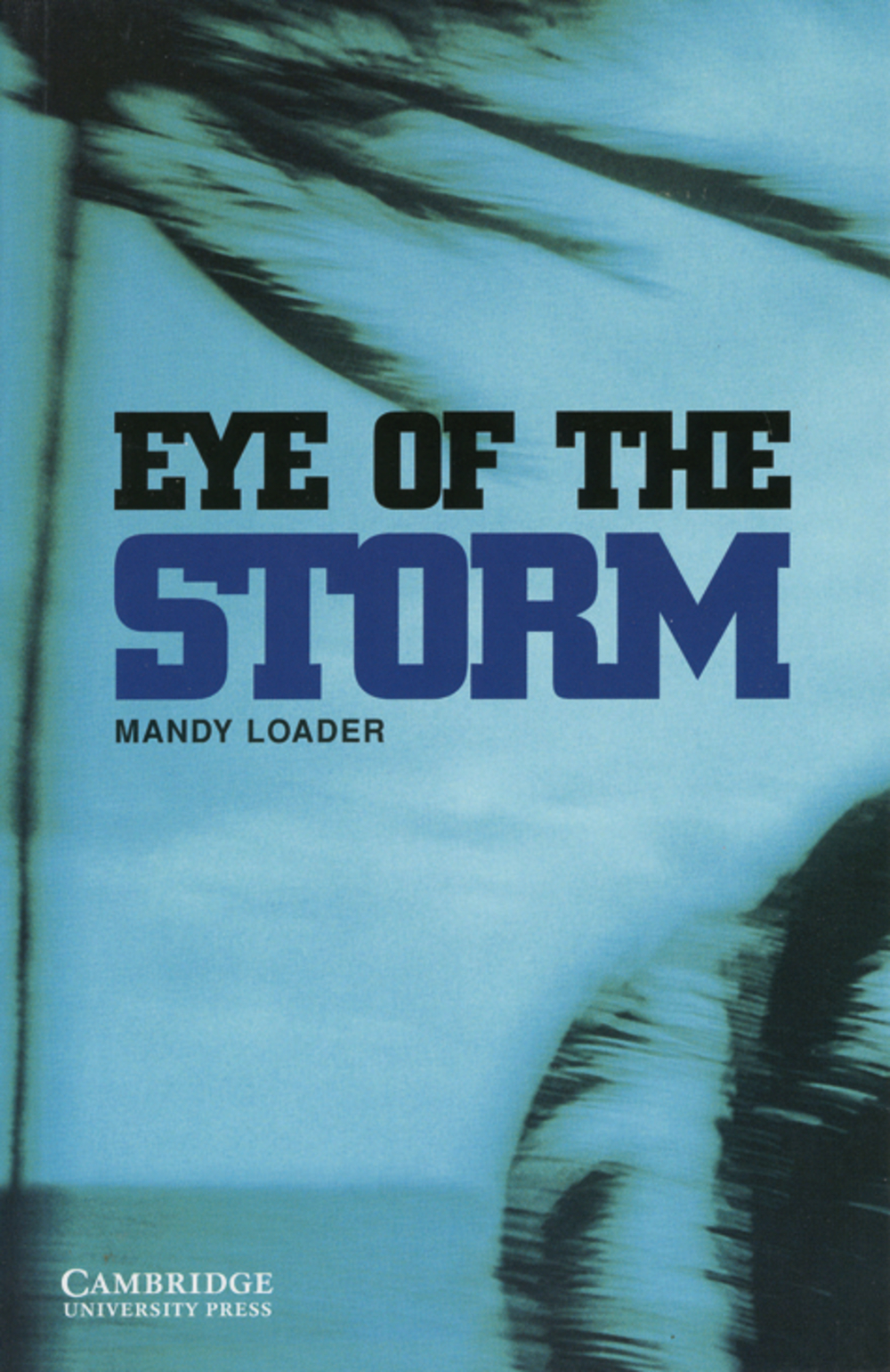 The Eye of the Storm: Level 3 - Mandy Loader