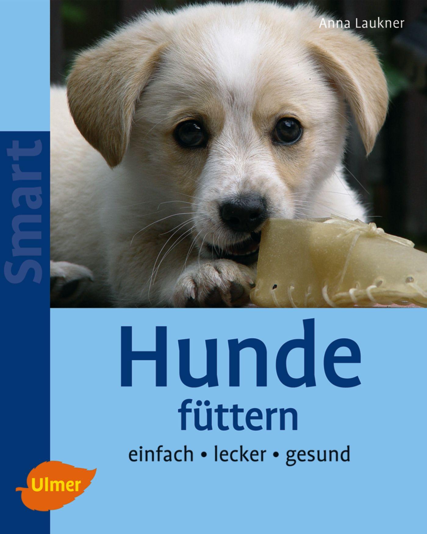 Hunde füttern: Einfach - lecker - gesund - Anna Laukner