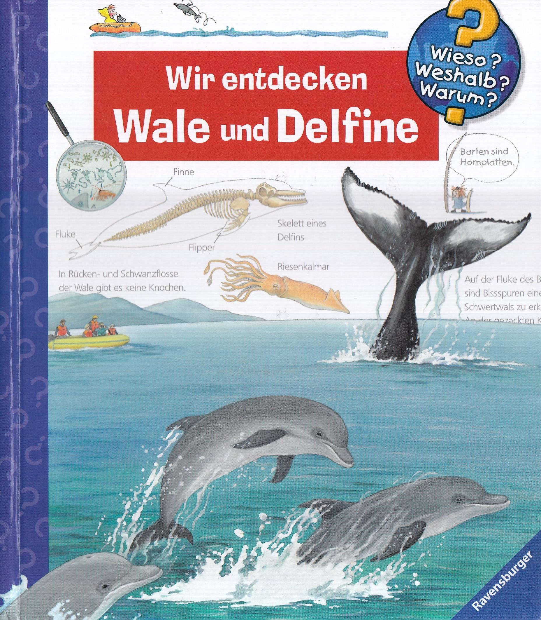 Wir entdecken Wale und Delfine (Wieso? Weshalb? Warum?) - Doris Rübel