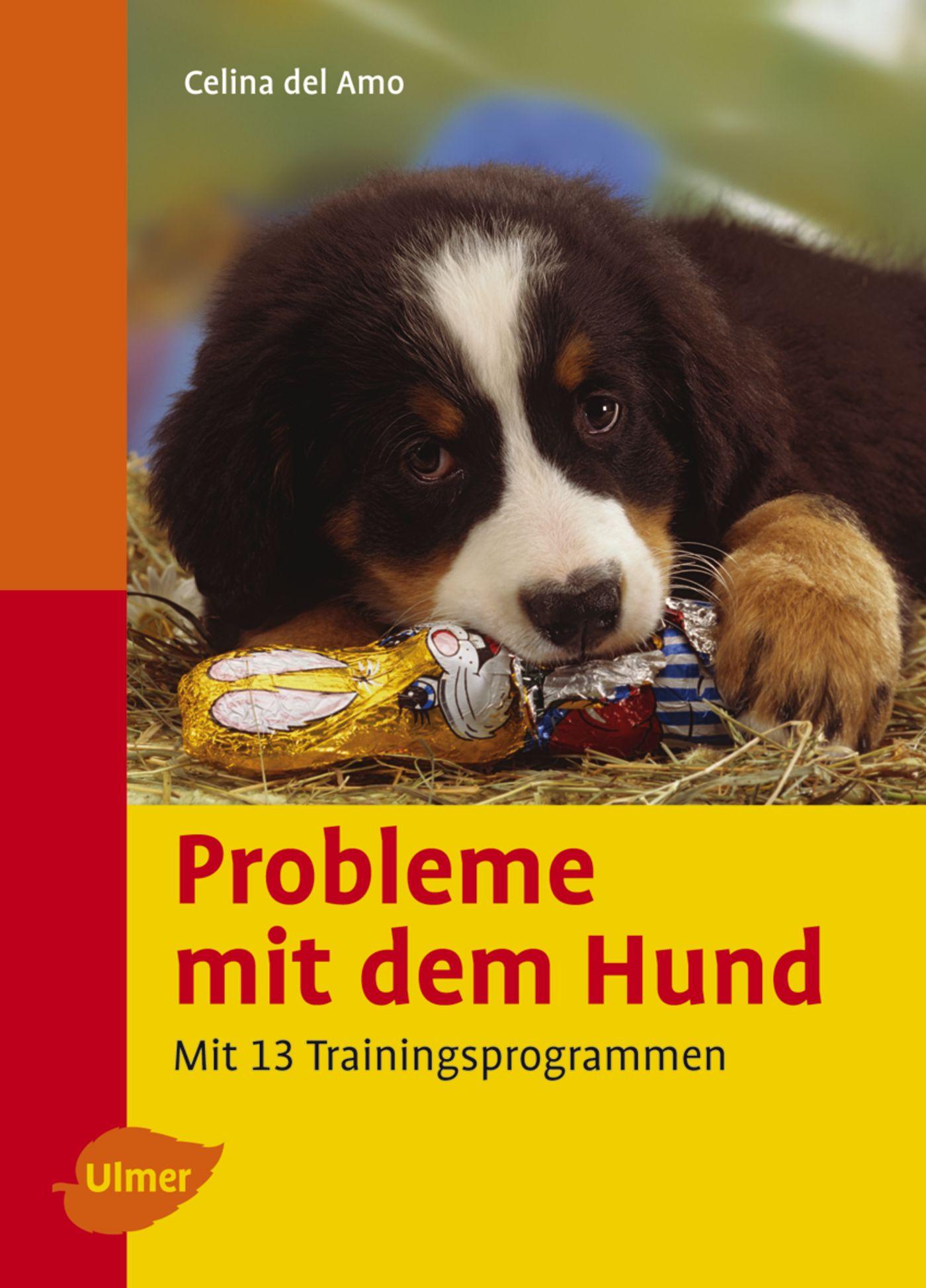 Probleme mit dem Hund verstehen und vermeiden. Mit 13 Trainingsprogrammen - Celina DelAmo