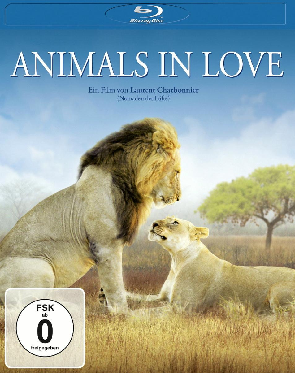 Animals in Love