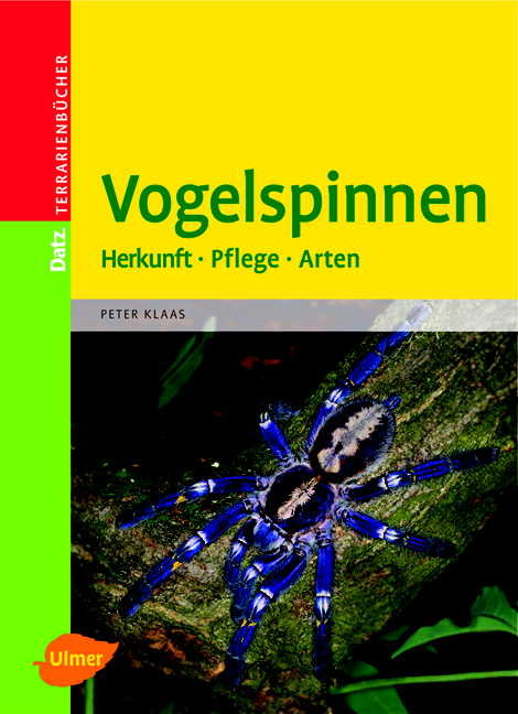 Vogelspinnen: Herkunft - Pflege - Arten. Terrar...