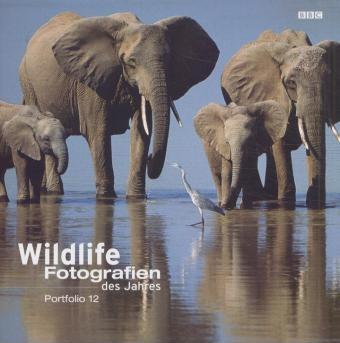 Portfolio 12. Wildlife Fotografien des Jahres 2002
