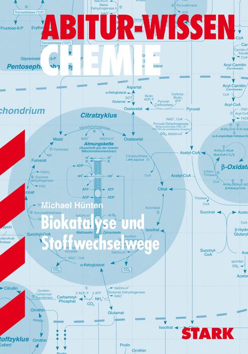 Abitur-Wissen Chemie: Biokatalyse und Stoffwech...