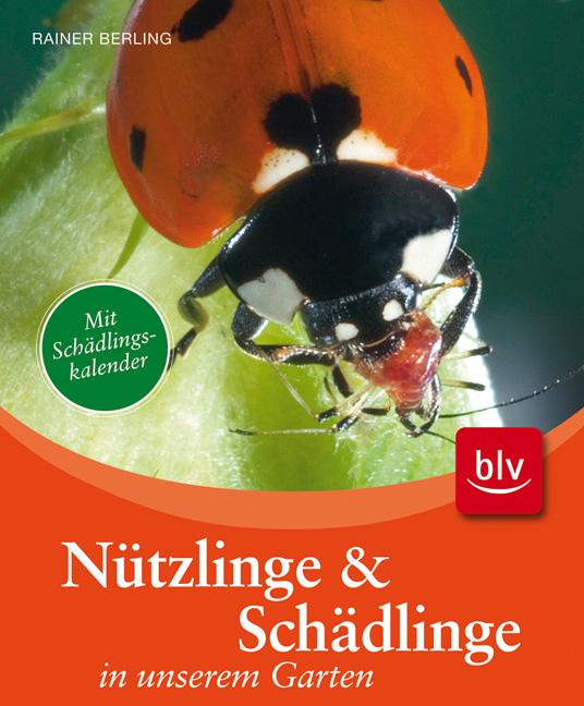 Nützlinge & Schädlinge in unserem Garten - Rain...