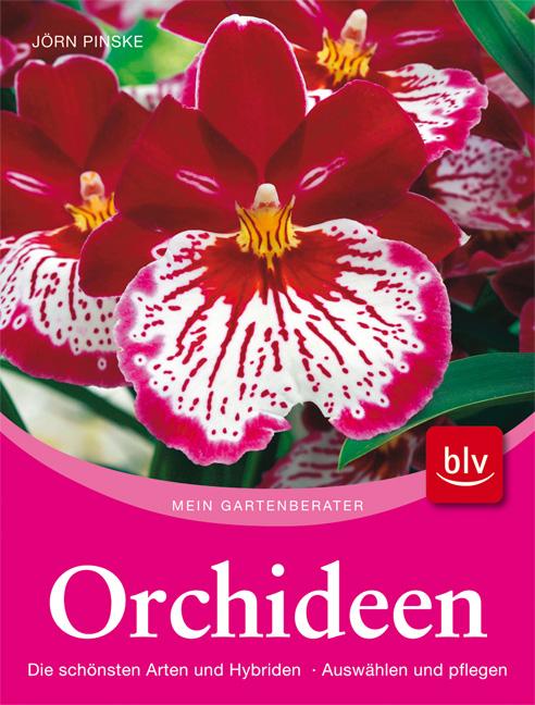 Orchideen: Die schönsten Arten und Hybriden. Auswählen und pflegen - Jörn Pinske