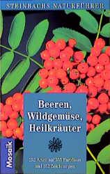 Steinbachs Naturführer Beeren, Wildgemüse, Heil...