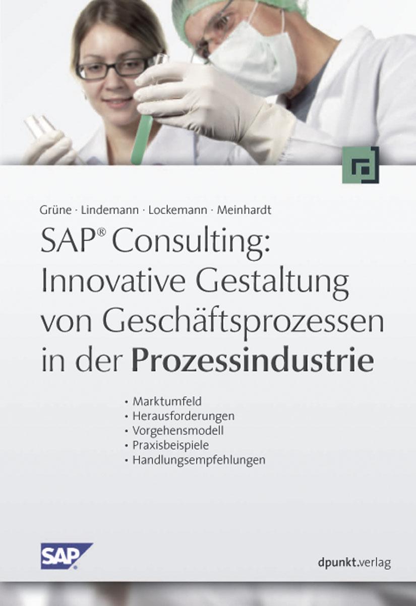 SAP ® Consulting: Innovative Gestaltung von Ges...