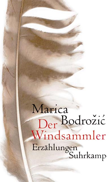 Der Windsammler: Erzählungen - Marica Bodroic
