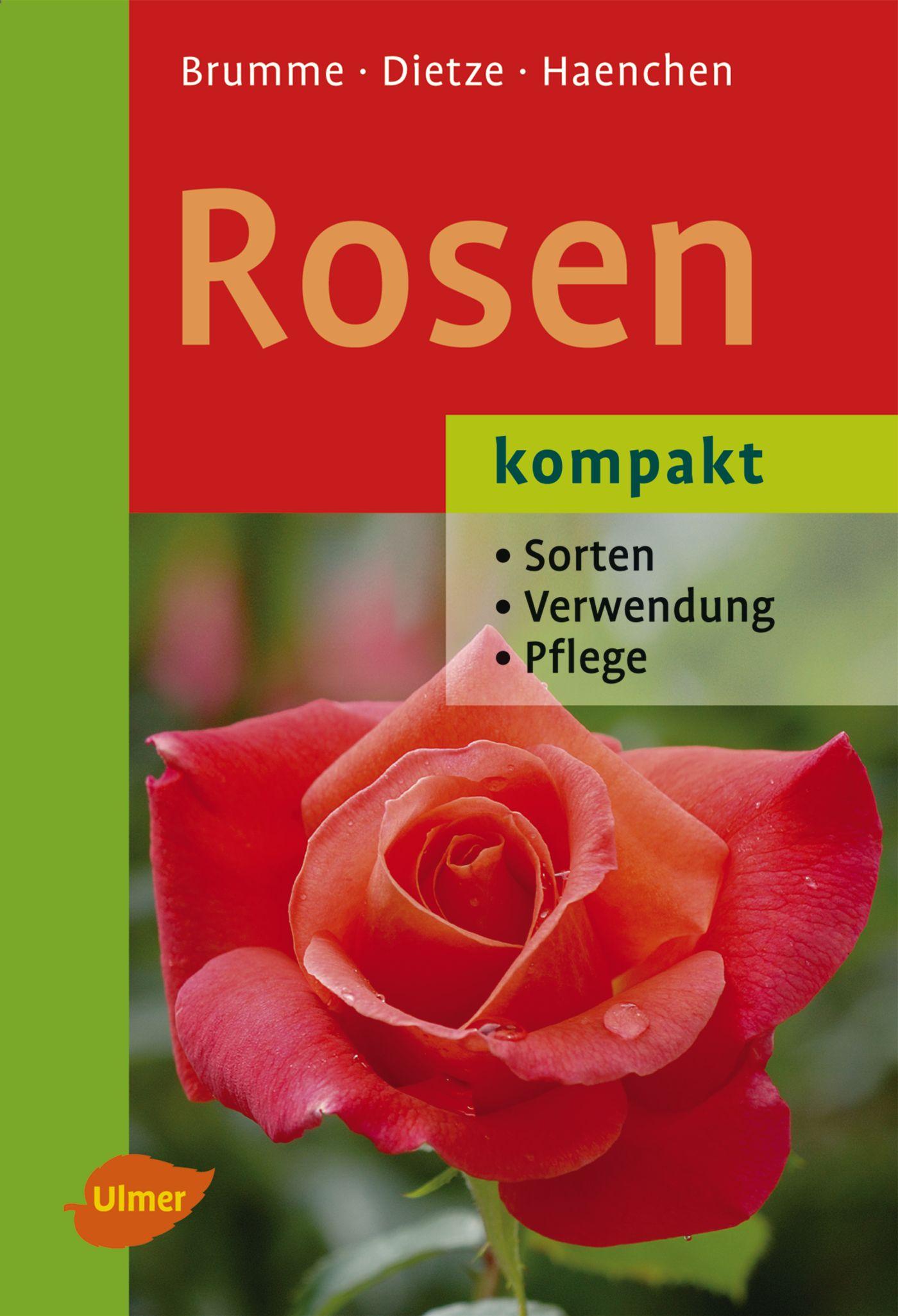 Rosen kompakt: Sorten - Verwendung - Pflege - H...