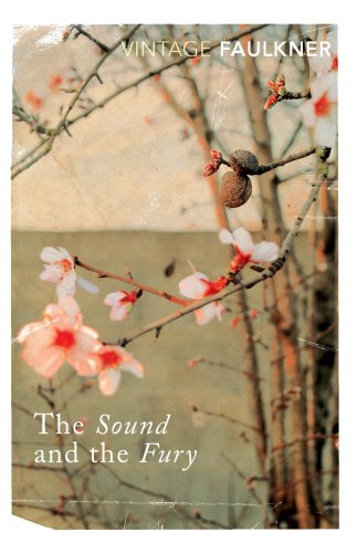 The Sound and the Fury (Vintage Classics) - William Faulkner