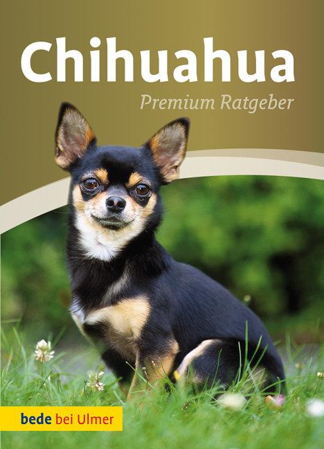 Chihuahua: Premium Ratgeber - Annette Schmitt