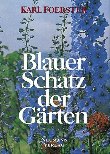 Blauer Schatz der Gärten - Karl Foerster