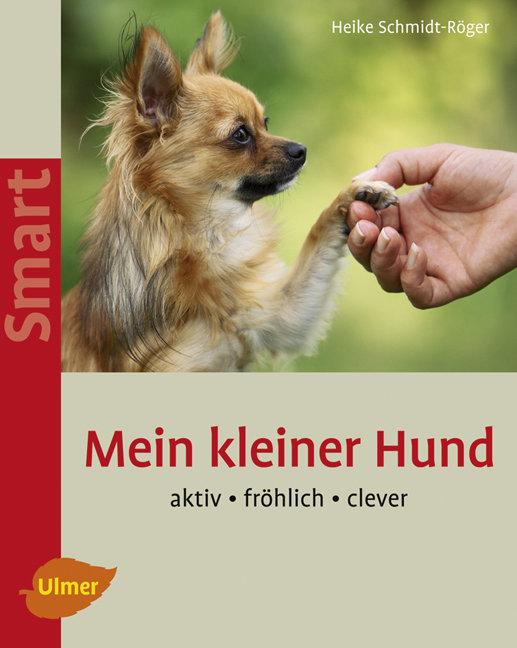 Mein kleiner Hund: Aktiv - fröhlich - clever - ...