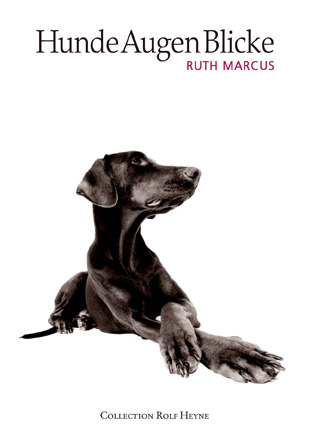 HundeAugenBlicke - Ruth Marcus