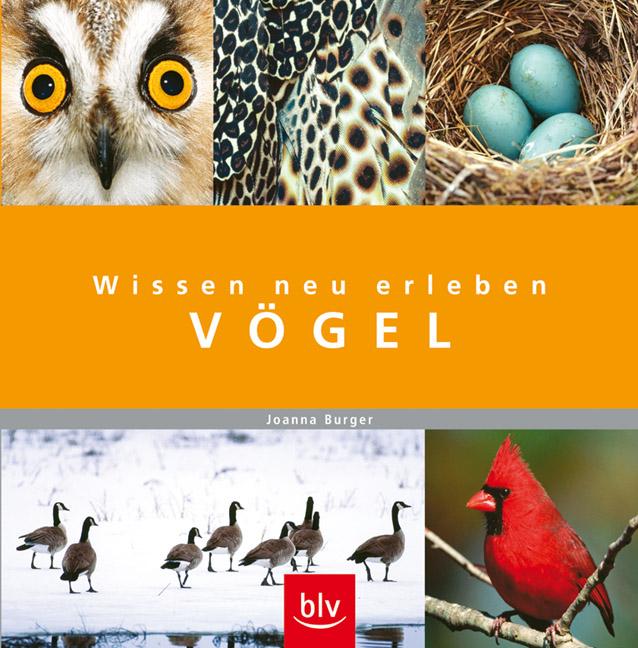 Wissen neu erleben: Vögel - Joanna Burger