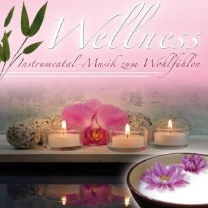 Wellness - Wellness: Instrumental-Musik Zum Woh...